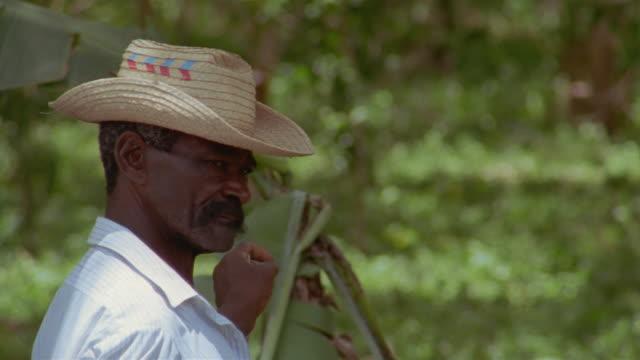 CU, Farmer with stick in green area, Santiago de Cuba, Cuba