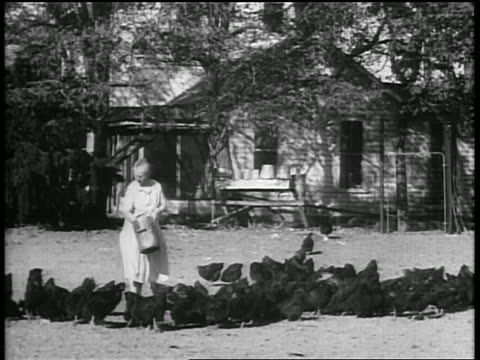 b/w 1928 farmer woman feeding large flock of hens / house in background / oklahoma / newsreel - 1928 stock videos & royalty-free footage