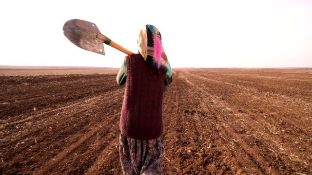 farmer woman - turkey middle east stock videos & royalty-free footage