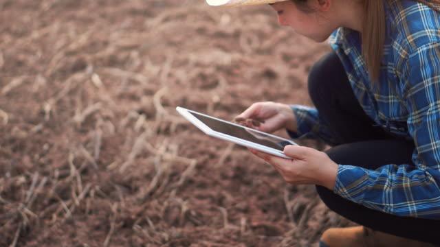 vídeos y material grabado en eventos de stock de mujer agricultora con tableta digital de verificación suelo orgánico agricultura arroz campo campo campo campo campo de trigo durante una estación seca de verano - medio de información