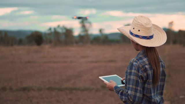 vídeos de stock, filmes e b-roll de mulher do fazendeiro com a tabuleta digital que controla o zangão tecnologia da agricultura sobre o terraço do campo do arroz - avião sem piloto