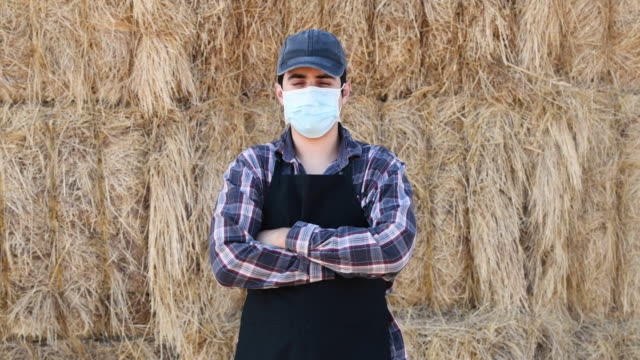 farmer worker wearing a protective face mask due covid-19 contagion prevention - farmer hay stock videos & royalty-free footage