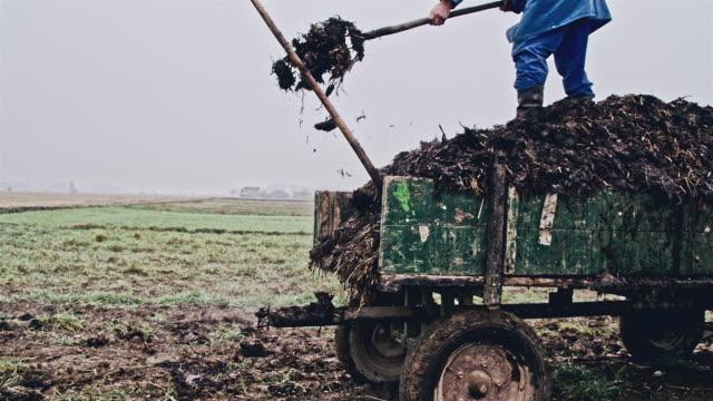 SLO MO Landwirt Arbeiten am frühen Morgen