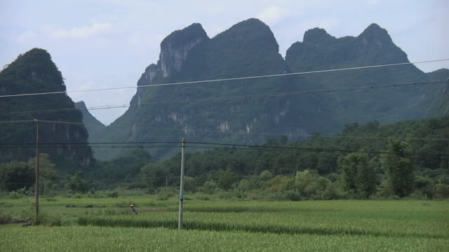 ws farmer working in rice field with karst hills in background / yangshuo, guangxi, china - yangshuo stock videos & royalty-free footage