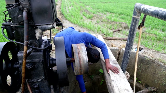 farmer working in the field - pulley stock videos & royalty-free footage