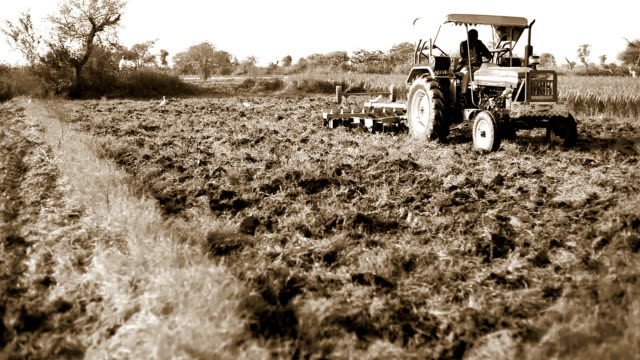Farmer working in the field