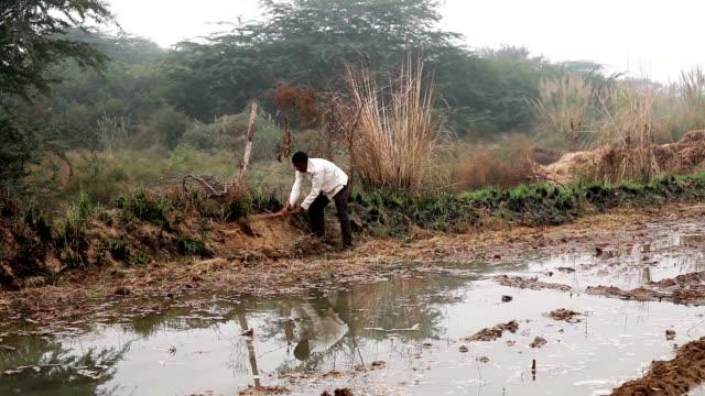 landwirt arbeiten im feld - jäthacke stock-videos und b-roll-filmmaterial