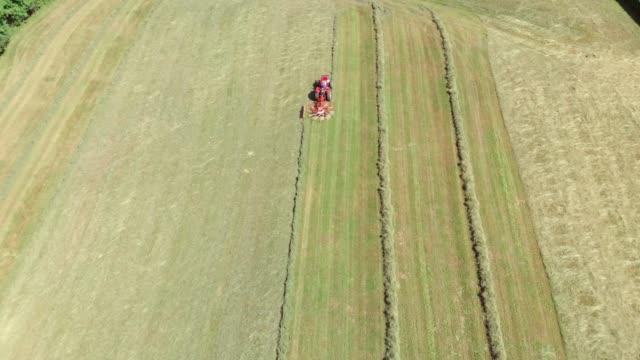 landwirt, der auf einem feld arbeitet - cereal plant stock-videos und b-roll-filmmaterial