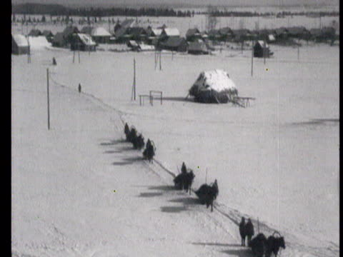 farmer working on haystack, horses in stables, horse-breeding , running through field, during winter / russia - 1943 stock-videos und b-roll-filmmaterial