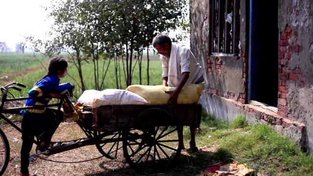 vídeos y material grabado en eventos de stock de retrato de trabajo granjero al aire libre - países en vías de desarrollo