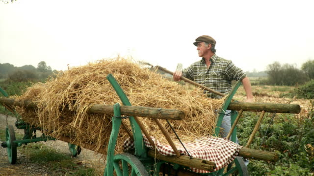 hd: farmer working - hay stock videos and b-roll footage