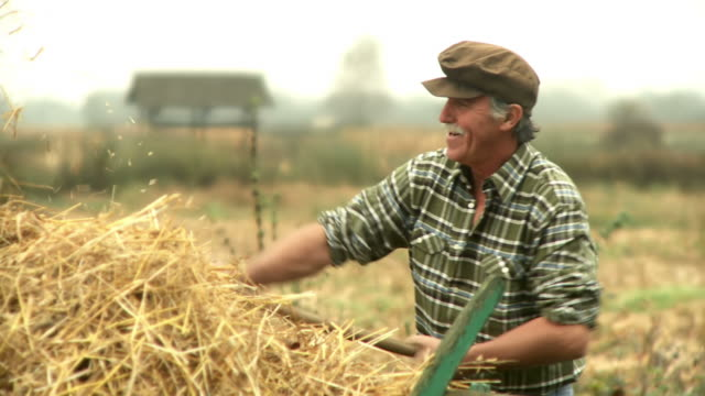 hd: farmer working - hay stock videos & royalty-free footage