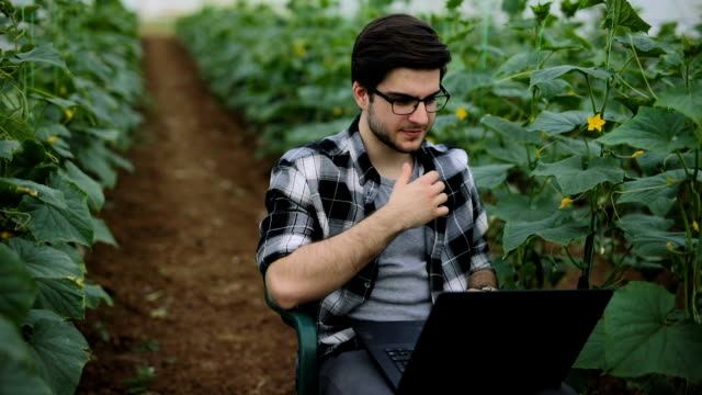 farmer works on laptop in greenhouse - laptops in a row stock videos & royalty-free footage