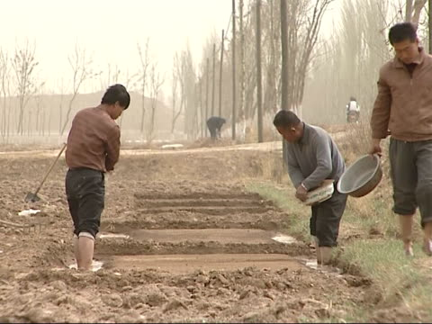 farmers and workers in paddy fields farm worker shifting earth to alter flow of water creating ditch for water to flow through farm workers... - asian style conical hat stock videos & royalty-free footage