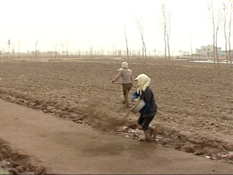 farmers and workers in paddy fields more of two female farm workers sowing in paddy field covering bed with topsoil good shots man working in field... - asian style conical hat stock videos & royalty-free footage