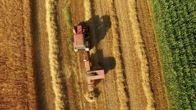 aerial farmers baling hay on the field - fieno video stock e b–roll