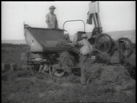 1938 ws farmers baling hay - hay stock videos & royalty-free footage