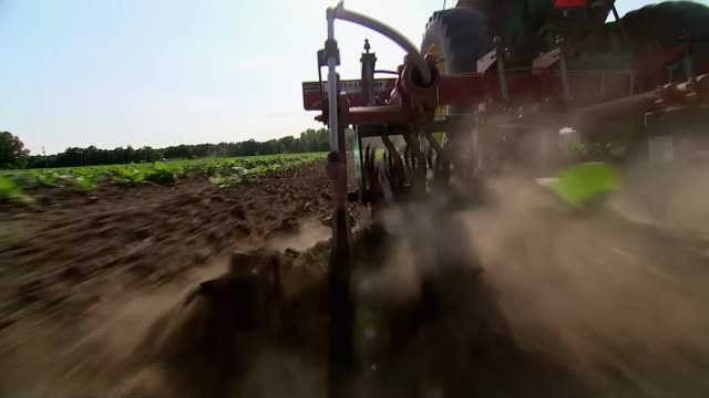 farmers being hit by trump's tariff war with china; north carolina, usa; various shots of susan ford ploughing field with tractor, ford interview.... - 関税点の映像素材/bロール