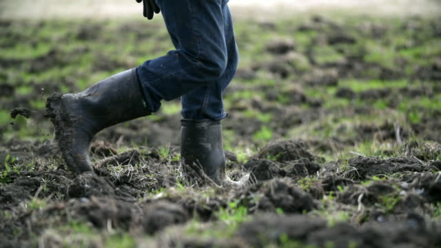farmer's boots walking on his land - stivale video stock e b–roll