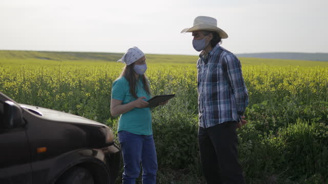 vídeos de stock e filmes b-roll de farmers examining oilseed rape crop with digital tablet near their car. smart farming in small business. wearing protective face masks for illness prevention while covid-19 pandemic. - aplanar a curva