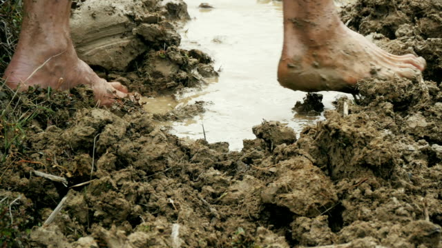 farmers feet working in the mud - mud stock videos & royalty-free footage