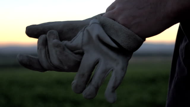 farmers gloves - protective glove stock videos & royalty-free footage