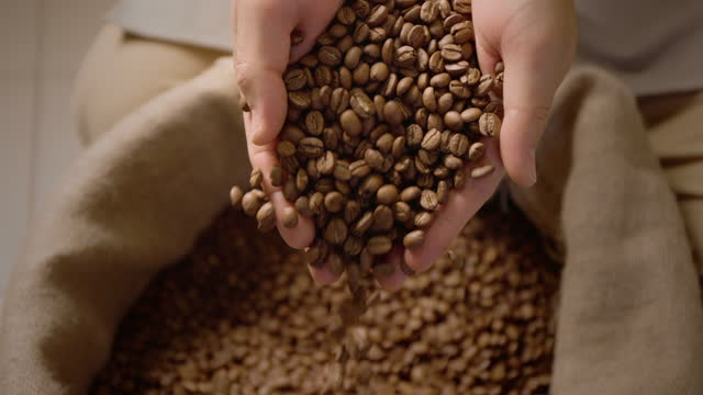 커피 원두