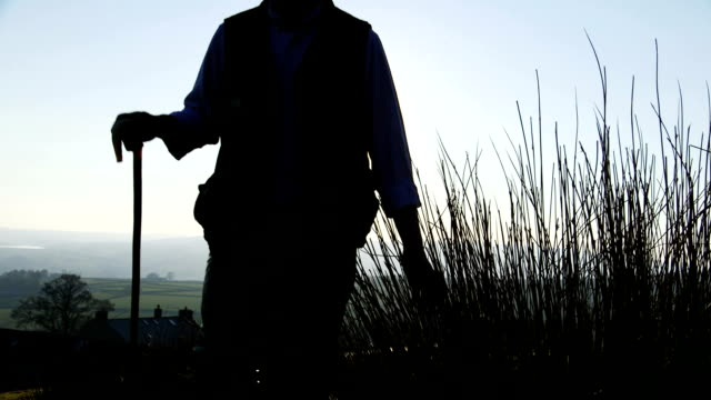 farmers hand running through long grass - farmer stock videos & royalty-free footage