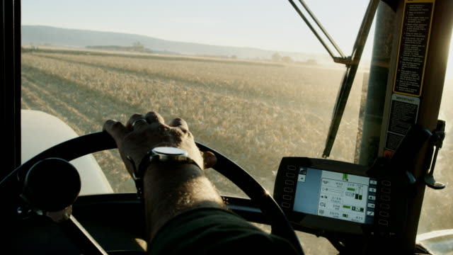 a farmer's hand with a wrist watch steers a tractor's steering wheel from the inside of the tractor cab as he navigates through a corn field using gps - produttore video stock e b–roll
