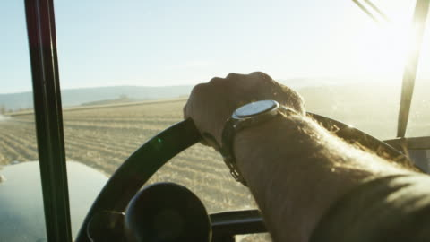 a farmer's hand with a wrist watch steers a tractor's steering wheel from inside of a tractor cab as he navigates through a corn field - tractor stock videos & royalty-free footage