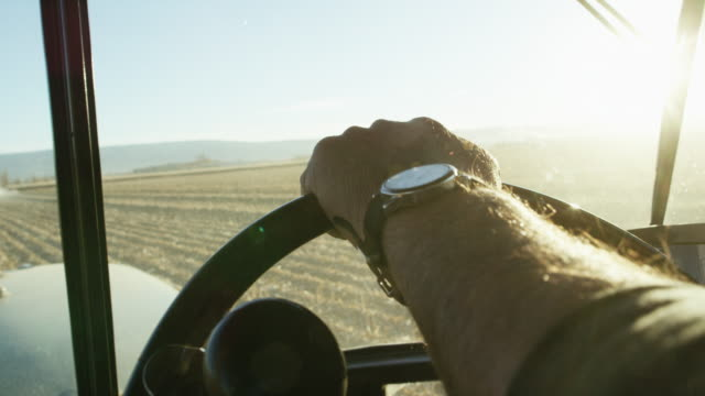 a farmer's hand with a wrist watch steers a tractor's steering wheel from inside of a tractor cab as he navigates through a corn field - produttore video stock e b–roll