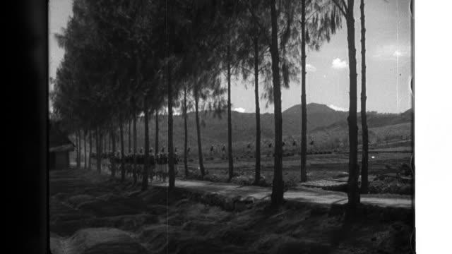 vídeos y material grabado en eventos de stock de farmers harvesting in a large soybean field of manchuria. farmers loading harvested soybeans into the carriage. a line of carriages to carry sacks of... - región de manchuria
