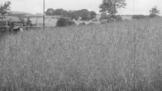 MONTAGE Farmers harvesting rye grass in a vast field / United Kingdom