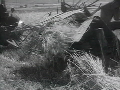 farmers harvesting with tractors audio / budapest, hungary - anno 1952 video stock e b–roll