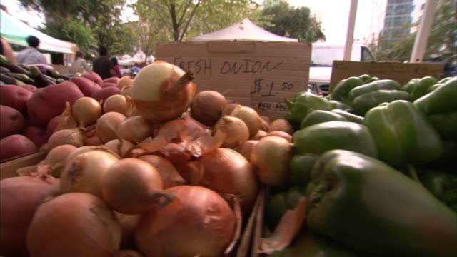 vídeos de stock e filmes b-roll de a farmer's market displays a variety of produce. - mercado de produtos agrícolas