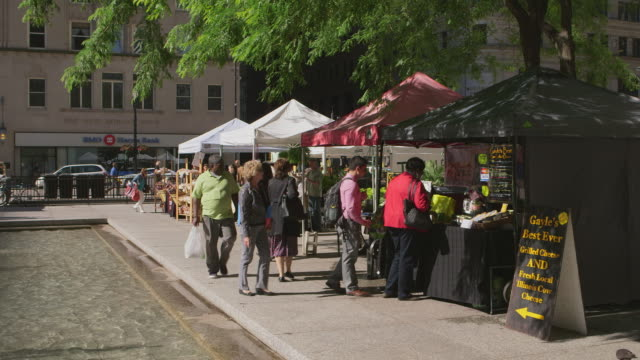 ws farmer's market in daley plaza - farm produce market stock videos & royalty-free footage