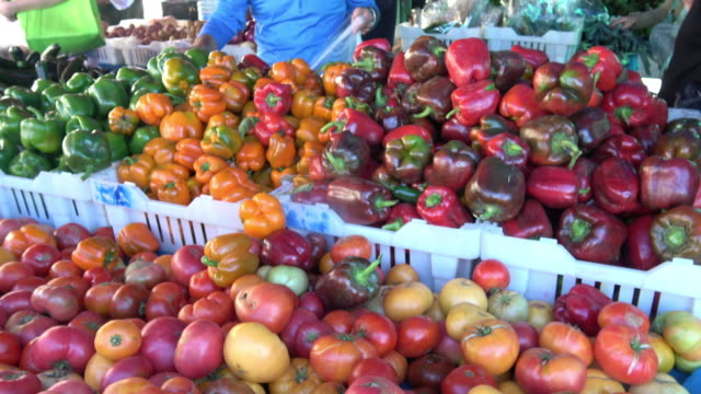 farmer's market vegetables - farm to table stock videos & royalty-free footage