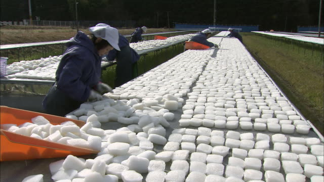 farmers organize frozen konjac. - root vegetable stock videos and b-roll footage
