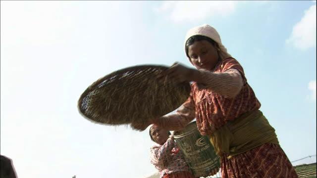 Farmers sifting Rice in Kathmandu Valley Medium Shot_Zoom In_Close Shot