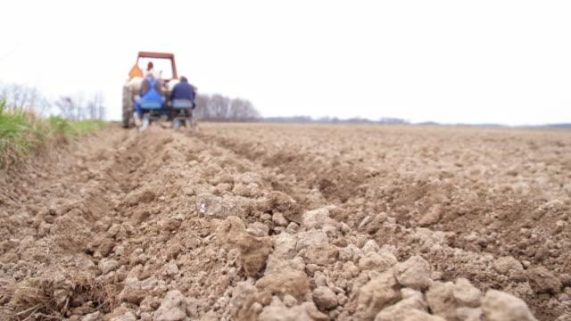 vidéos et rushes de agriculteurs semer les pommes de terre - pomme de terre rouge