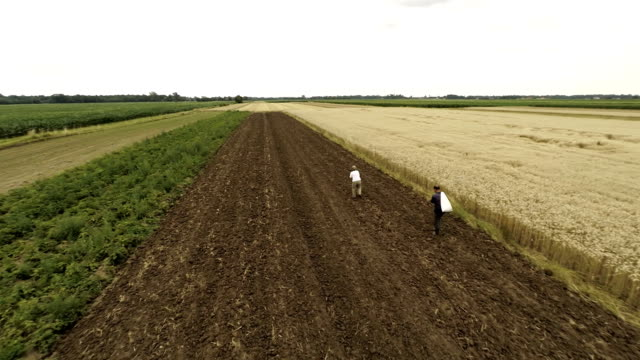 aerial farmers sowing - sowing stock videos & royalty-free footage
