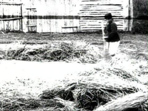 ms farmers threshing wheat unloading wheat car man leading horse cart on wheat before threshing audio/ russia - 1925年点の映像素材/bロール