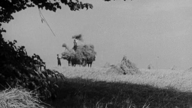 vidéos et rushes de 1930 montage farmers tossing hay in a field / united kingdom - 1930