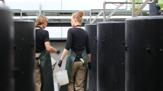 farmers walking amidst storage tanks in fish farm - bib overalls stock videos & royalty-free footage