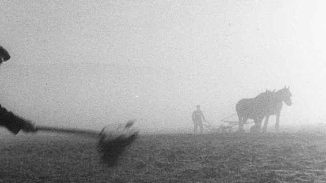 1942 MONTAGE Farmers working fields with horse-drawn plows, tractors, and hand tools / United Kingdom