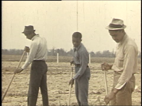 1940 MONTAGE farmers working on soil with tools / Boligee, Alabama, United States