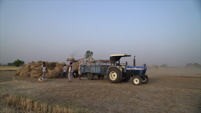 farmers working with tresher machinery in field during harvesting season in the panipat district of haryana, india, on sunday, april 11, 2021. - tractor stock videos & royalty-free footage