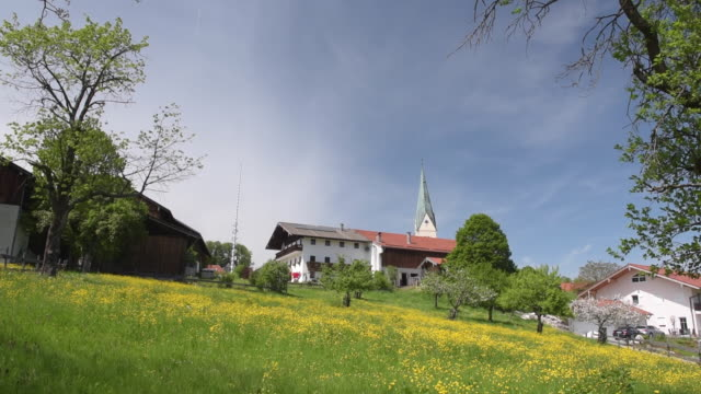 Farmhouse and church on buttercup meadow