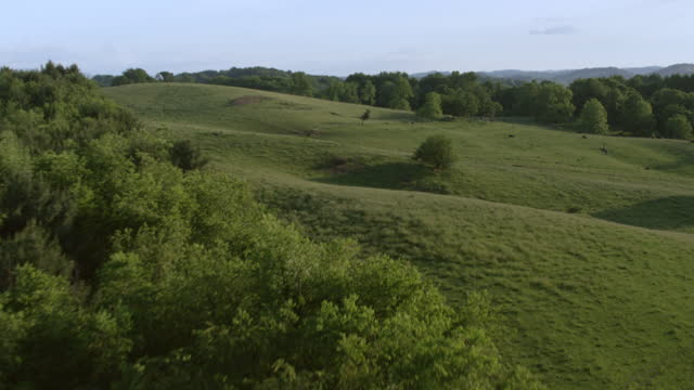 ws aerial pov farmhouse and grain silos on farmland, cows grazing in background / smyth county, virginia, united states - なだらかな起伏のある地形点の映像素材/bロール