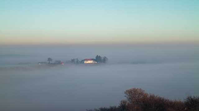 T/L Farmhouse and vineyards in the fog